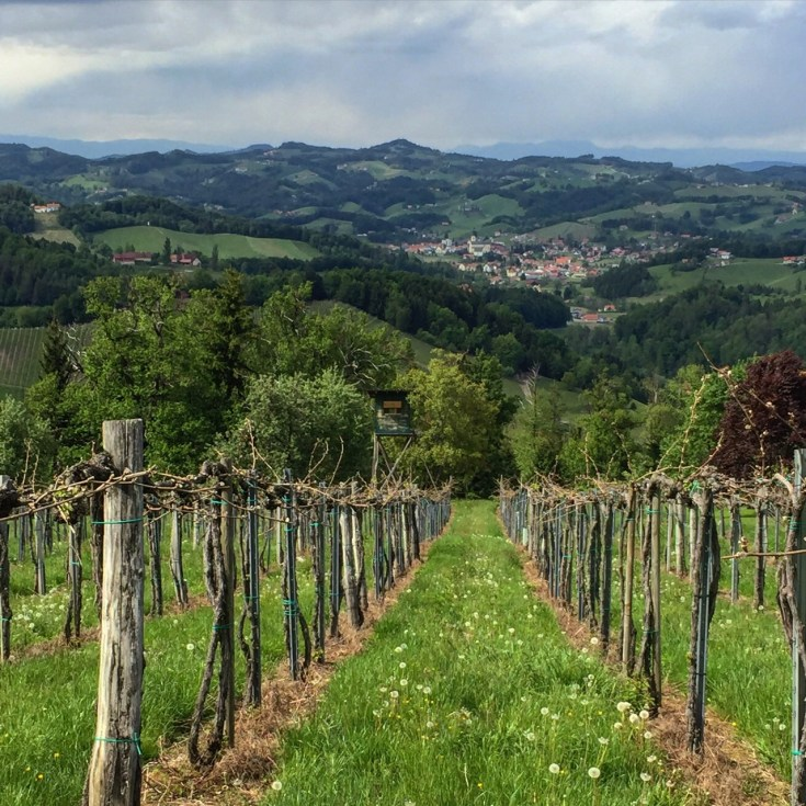 Styrian wine country.